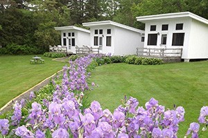 Edgewater Motel & Cottages :: 11 oceanfront cottages and suites nestled on the shore of Salisbury Cove, just minutes to Acadia National Park & 5 miles to downtown Bar Harbor, and views of Frenchman's Bay!